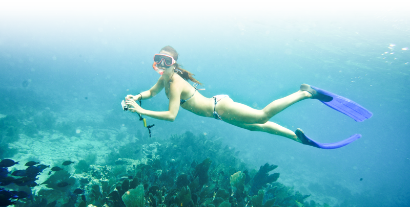 Snorkling in the Lower Keys
