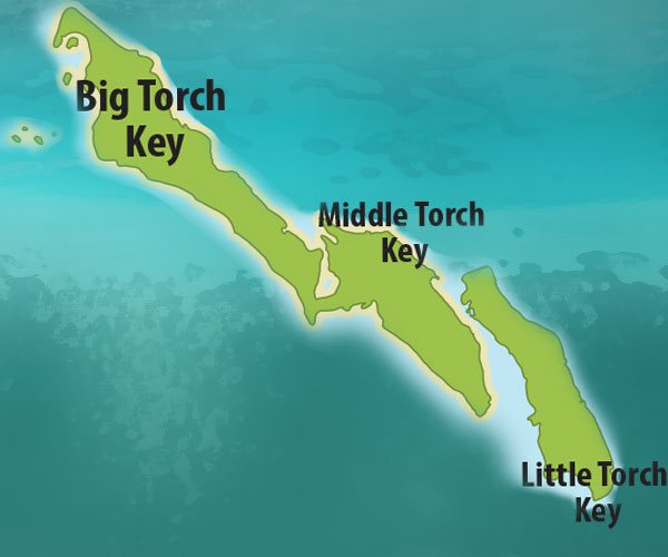 The Torch Keys